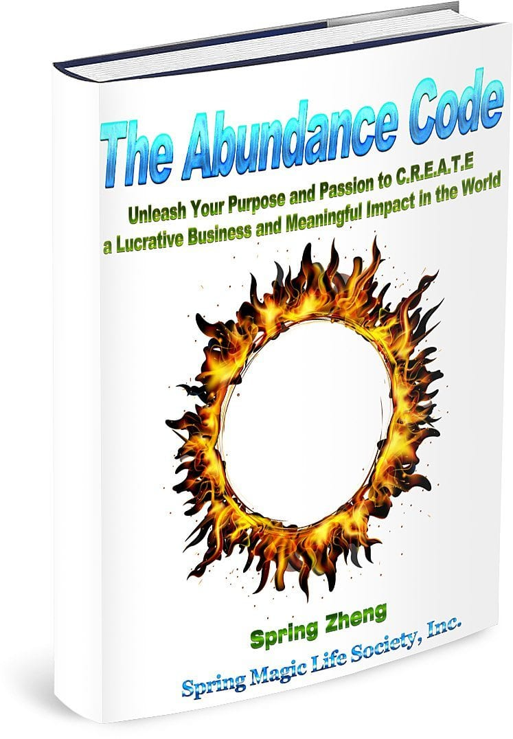 "FREE eBook: ""The Abundance Code ~ Unleash Your Purpose and Passion to C.R.E.A.T.E a Lucrative Business and Meaningful Impact in the World!"""